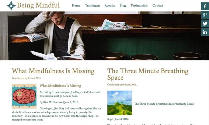 Being Mindful by Netnog websites