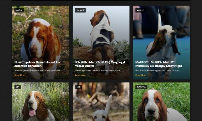 Morning Dew Sweepers Basset Hound Kennel by Mariano Galán