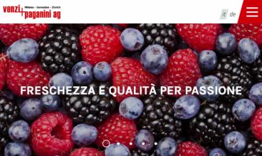 Venzi+Paganini by ecomunicare.ch sagl Web Design
